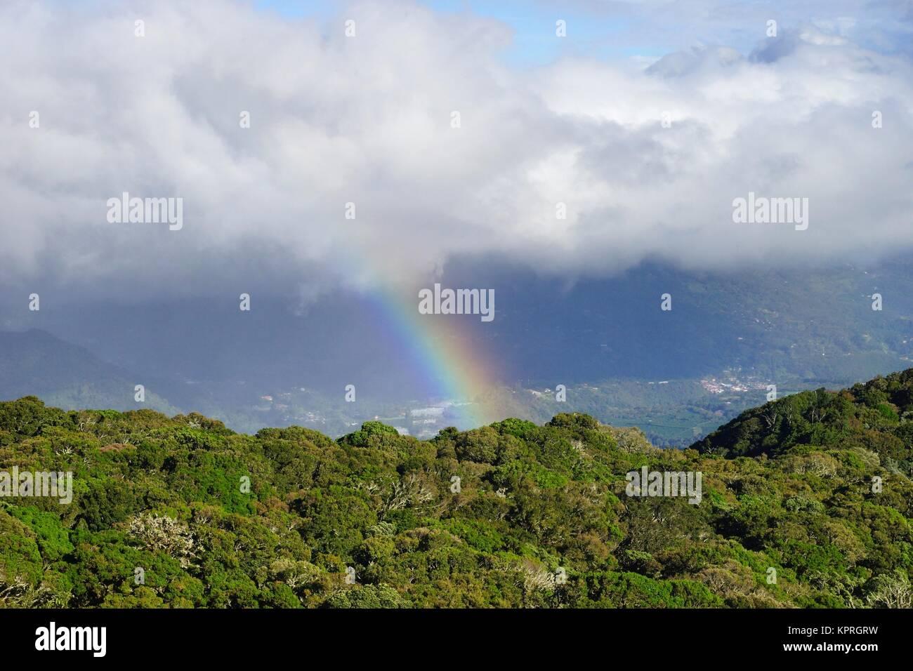 Un arcobaleno oltre il cloud più scuro dello sfondo verde con alberi da sole in primo piano. Immagini Stock