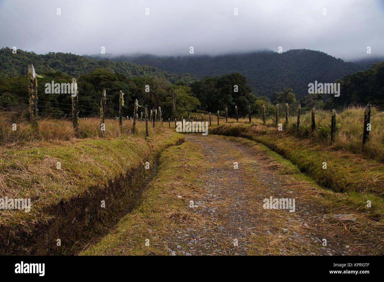 Vecchia strada sterrata nelle zone rurali a Panama su una mattinata nebbiosa Immagini Stock