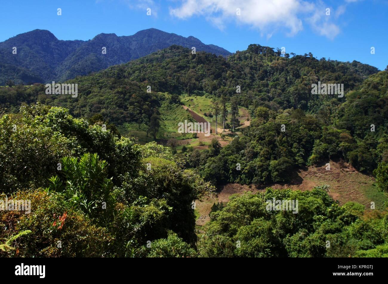 Giorno Brignt vista sul paesaggio di montagna in Panama. Immagini Stock