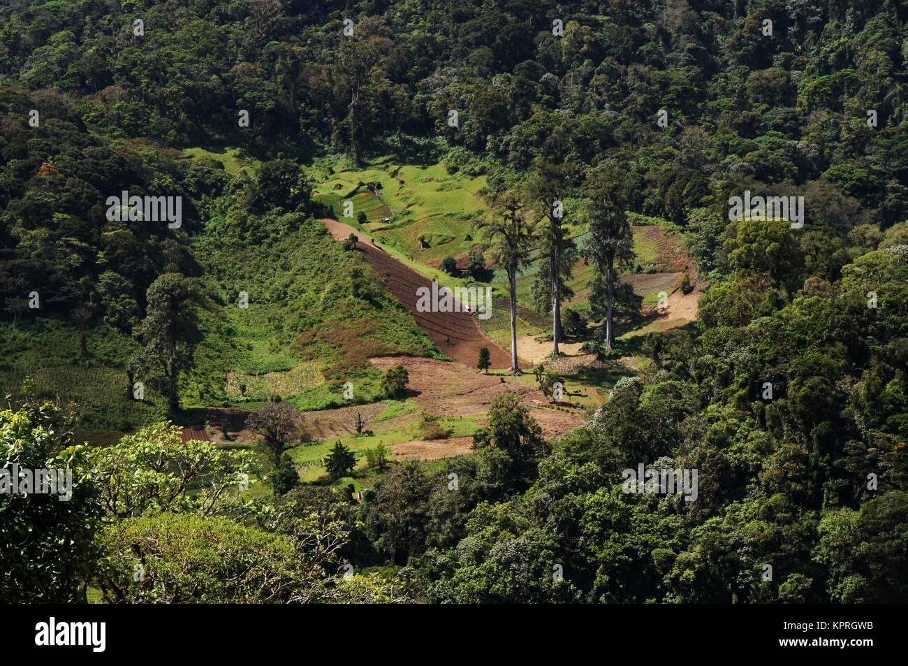 Giorno Brignt vista sul paesaggio di montagna in Panama con zona agricola su terreno irregolare Immagini Stock