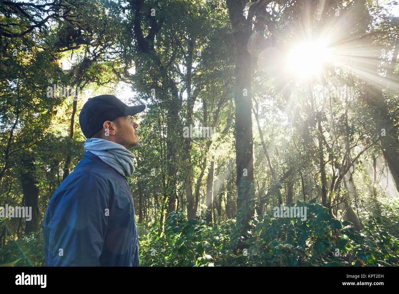 Escursione durante il sunrise. Giovane uomo (traveler) passeggiate nella foresta pluviale tropicale in Thailandia Immagini Stock
