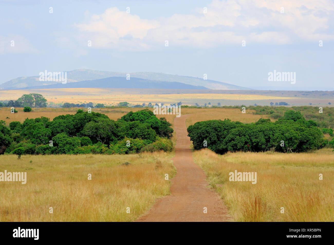 Savana paesaggio nel parco nazionale del Kenya, Africa Immagini Stock