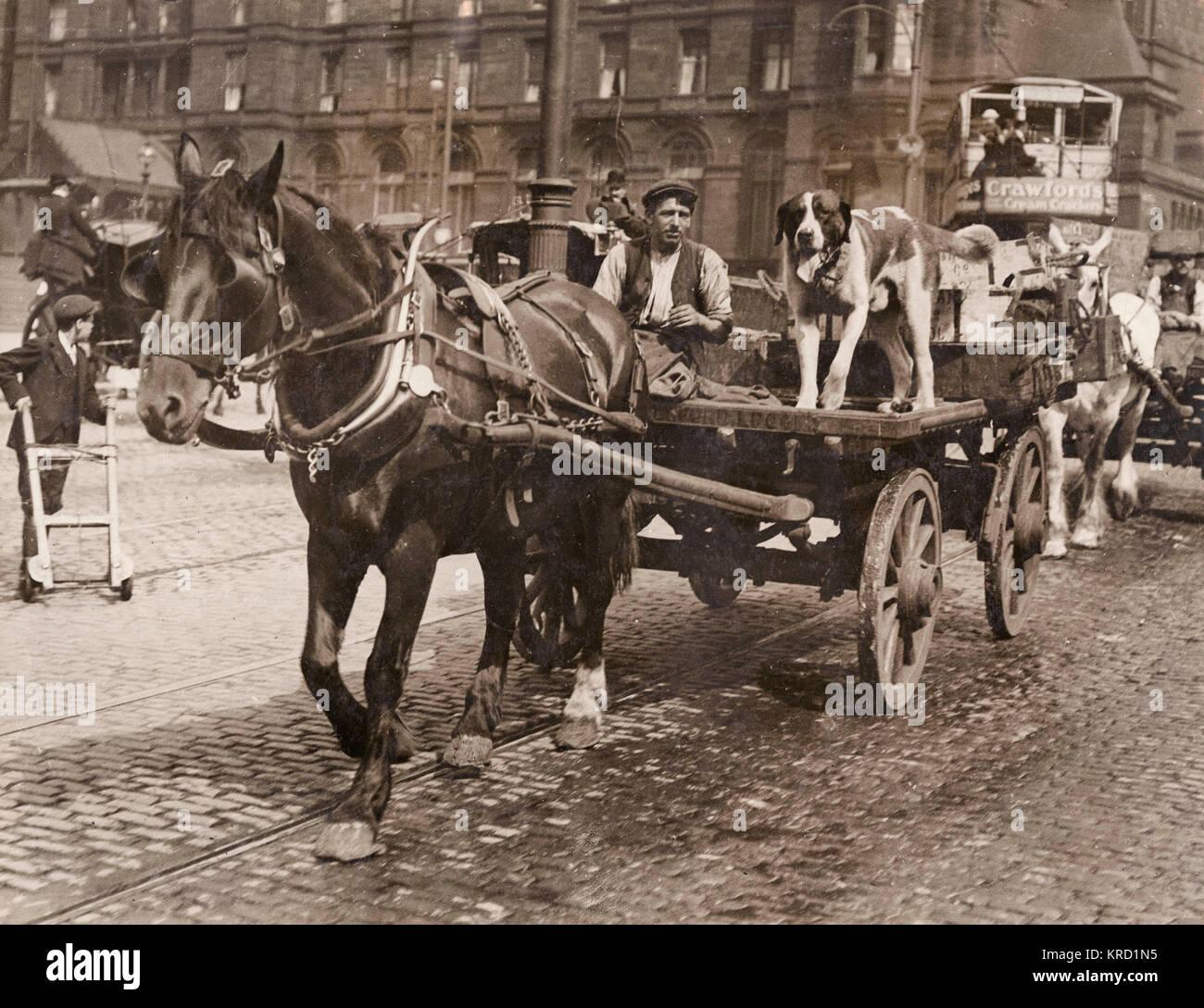Un driver che non ha bisogno della protezione della polizia -- un uomo con il suo cavallo e il carrello e un cane Immagini Stock