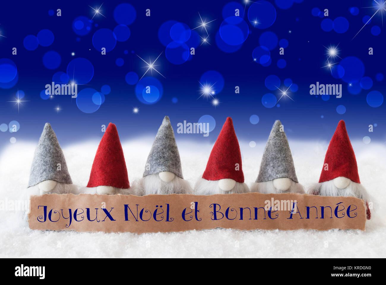 Auguri Di Buon Natale E Felice Anno Nuovo In Francese.Etichetta Con Testo Francese Joyeux Noel Et Bonne Annee