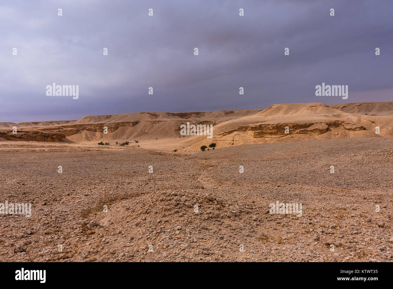 Un paesaggio del deserto a est di Riyadh Immagini Stock