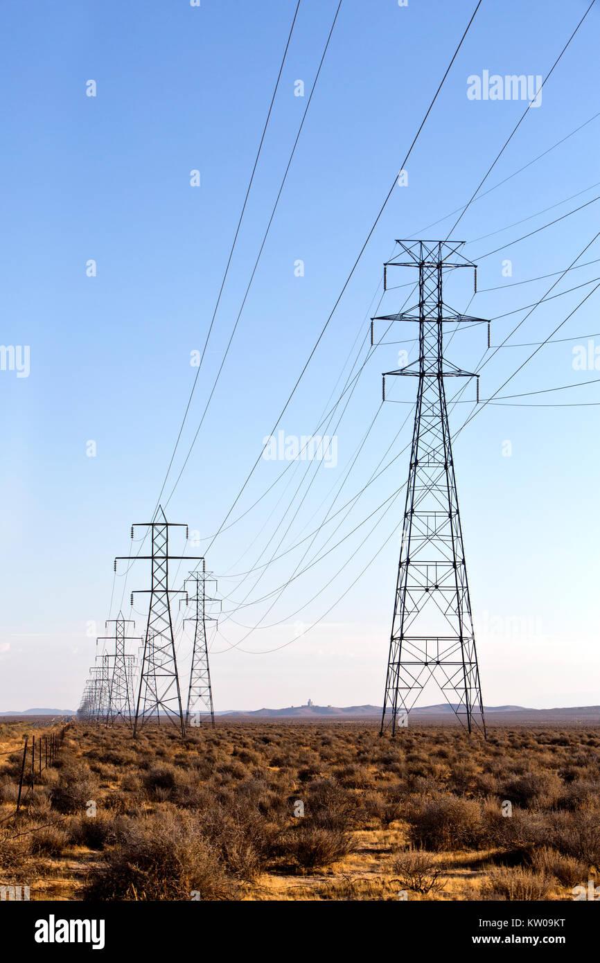 Linee elettriche ad alta tensione, torri principali, flora nativa. Foto Stock