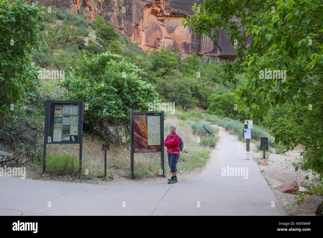 Piangendo roccia Sentiero del Parco Nazionale Zion Immagini Stock