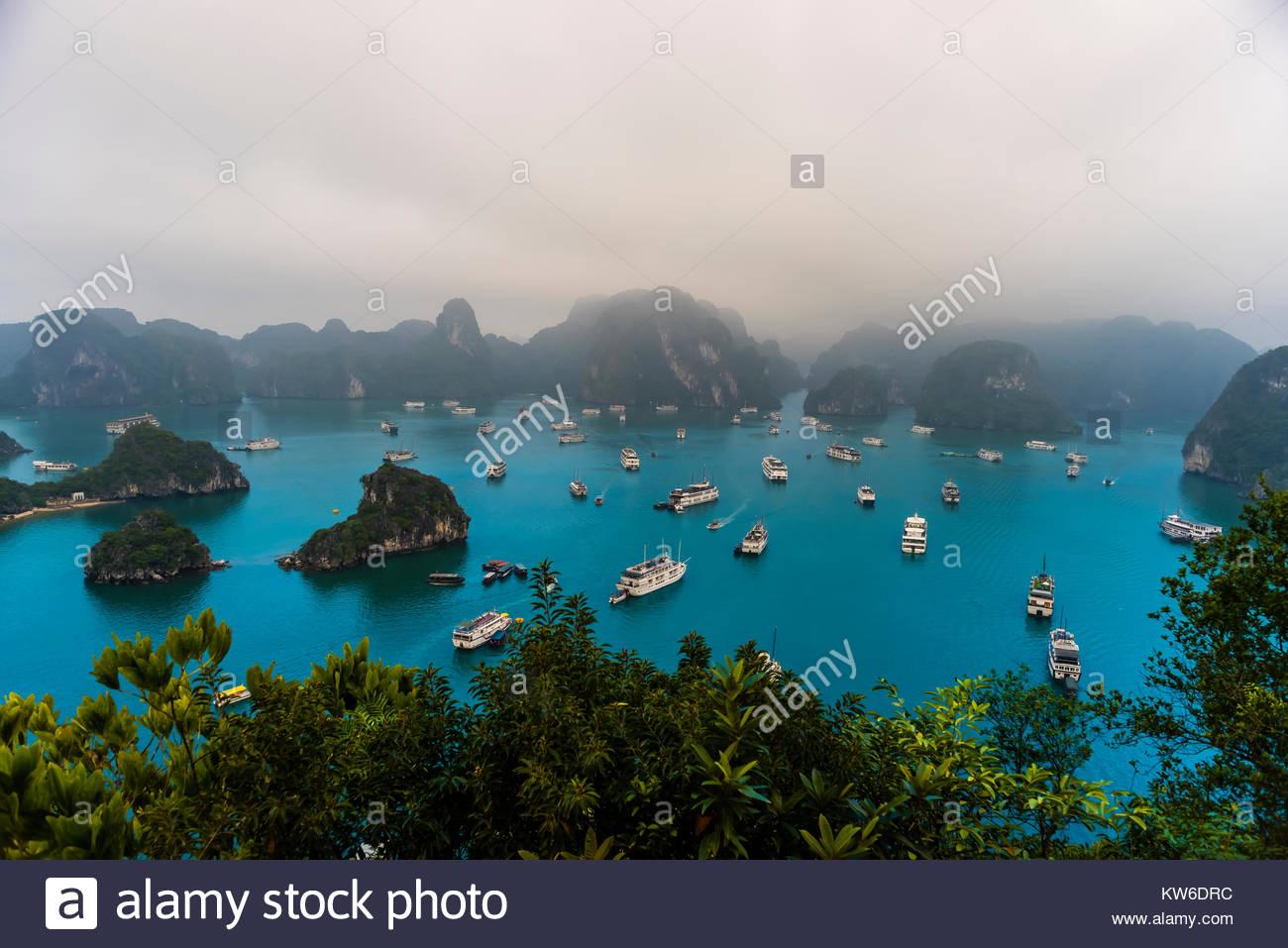 Angolo di alta vista della baia di Halong da Ti Top Isola, Vietnam del Nord riempito con tour barche. Il bay offre Immagini Stock