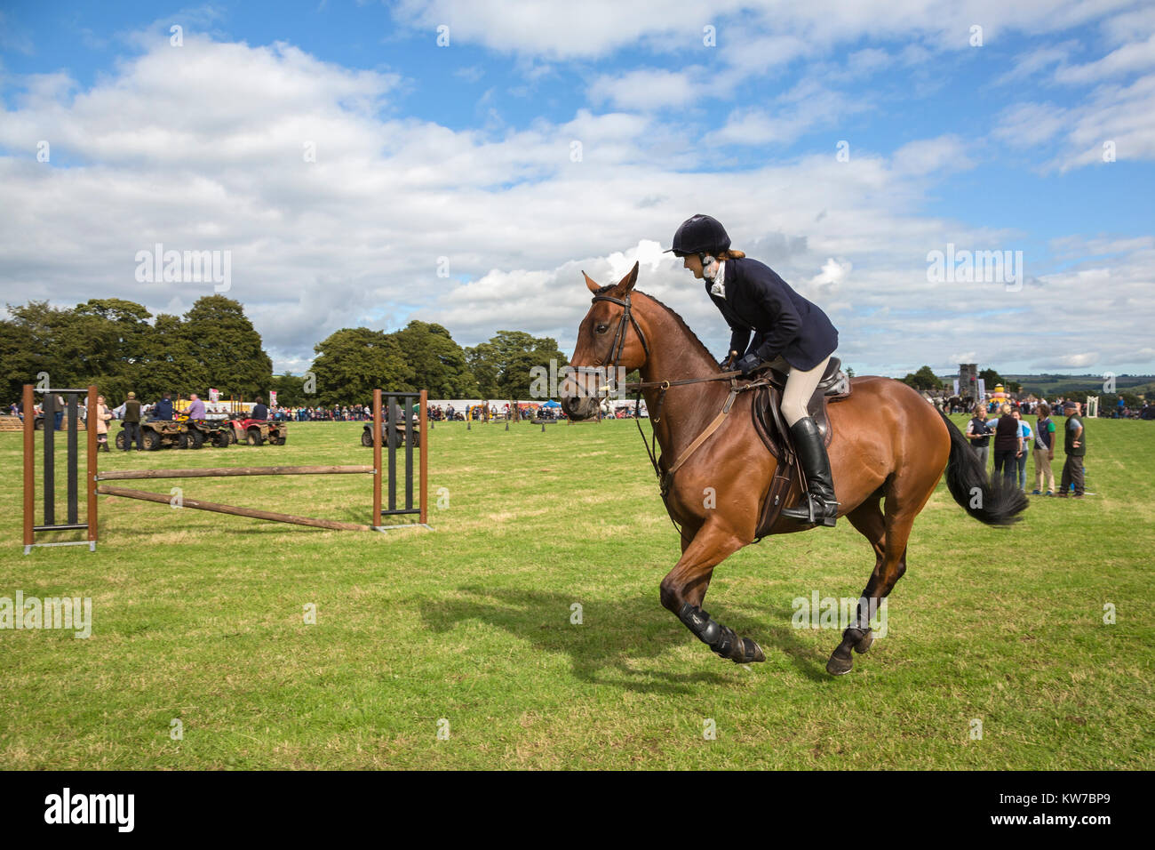 Show Jumping, Bellingham Show, Bellingham, Northumberland, Regno Unito, Agosto 2017 Immagini Stock