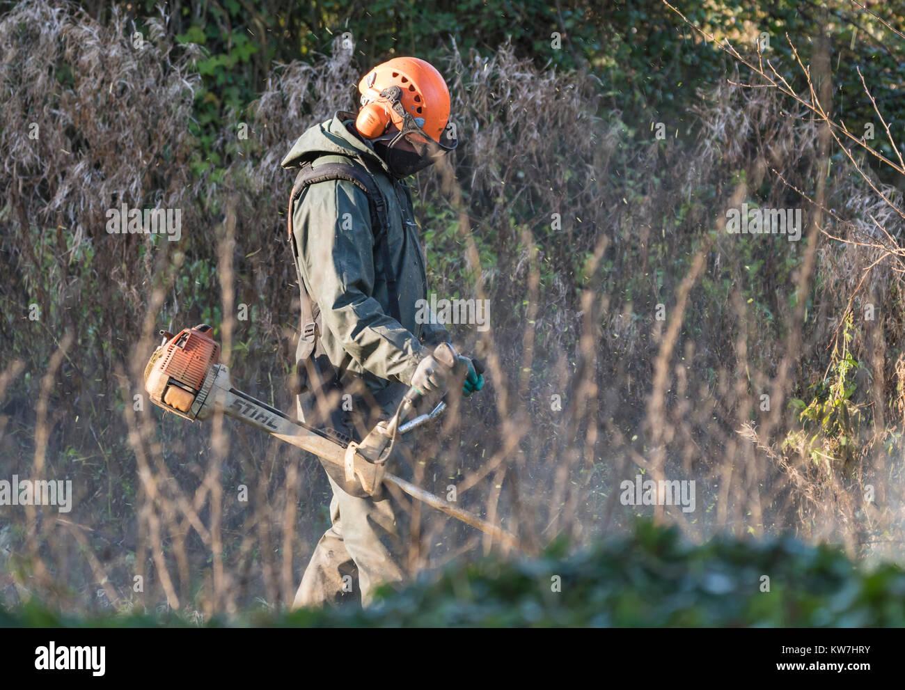 Uomo che utilizza un alimentata a benzina STIHL Brushcutter in inverno, indossare indumenti di protezione, casco Immagini Stock
