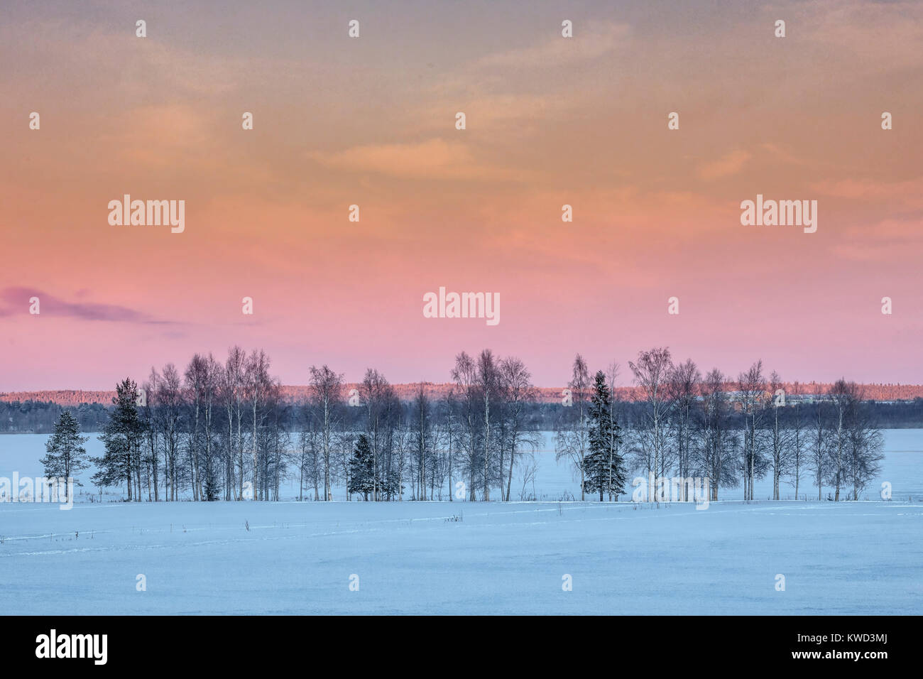 Sweden snow cabin trees immagini sweden snow cabin trees for Cabina innevata nei boschi