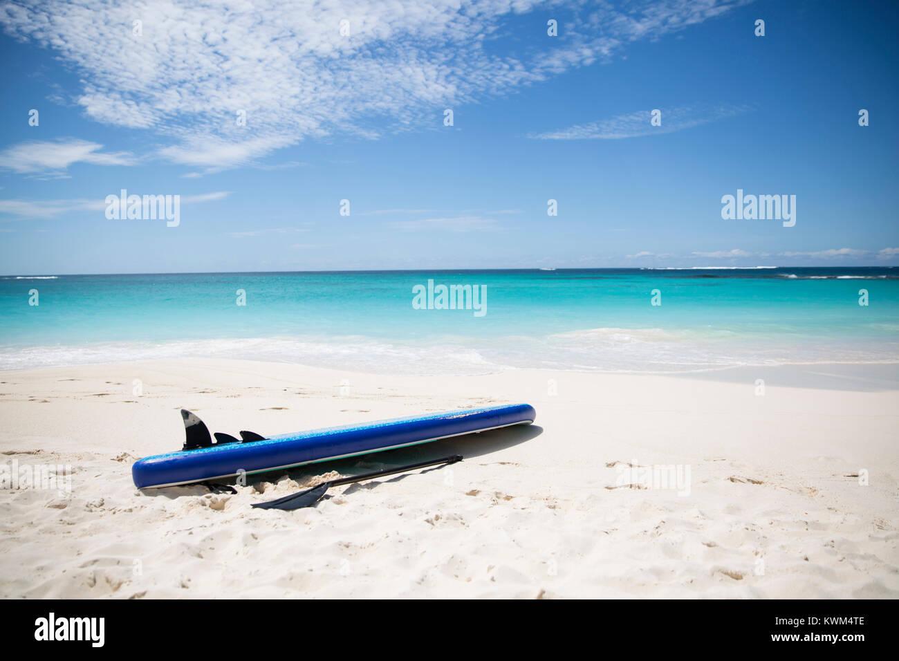 Paddleboard e oar presso la spiaggia contro il mare Immagini Stock