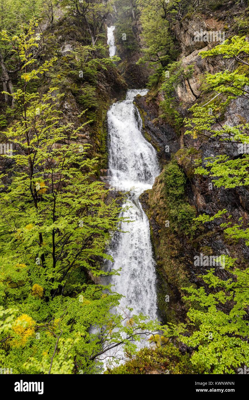 Sendero a La Cascada Velo de la Novia; Percorso del Velo de la Novia cascata; Ushuaia, Argentina Immagini Stock