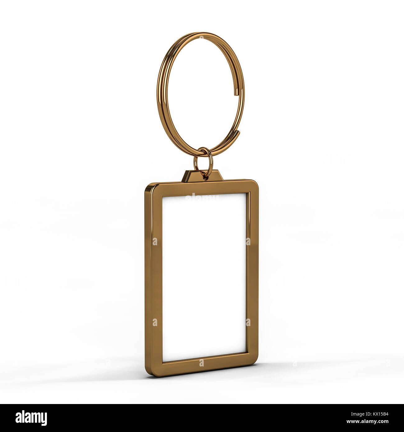 3D rendering illustrazione di un fustellato portachiavi di metallo con un anello per una chiave, isolata su uno Immagini Stock