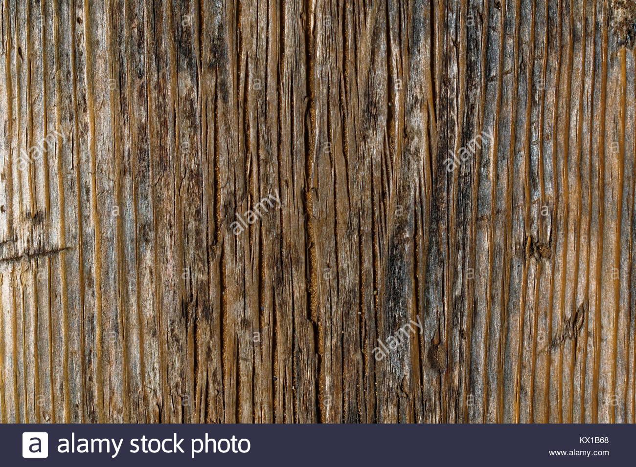 Legno Bianco E Nero : In legno marrone con bordo bianco e nero texture macchie di foto