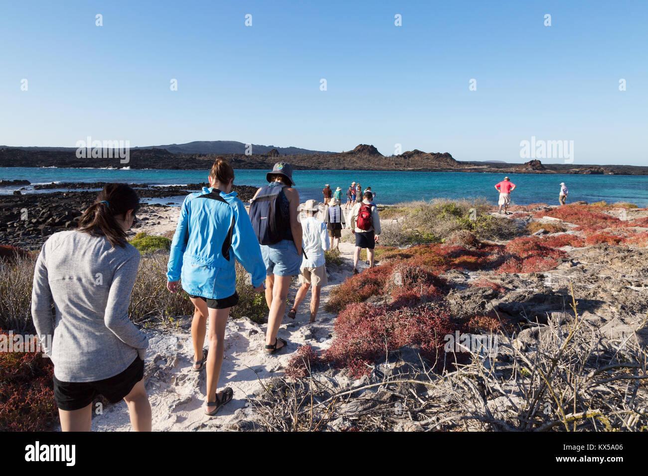 La gente che camminava sul cappello cinese isola come parte di un tour guidato, Galapagos Parco Nazionale delle Immagini Stock