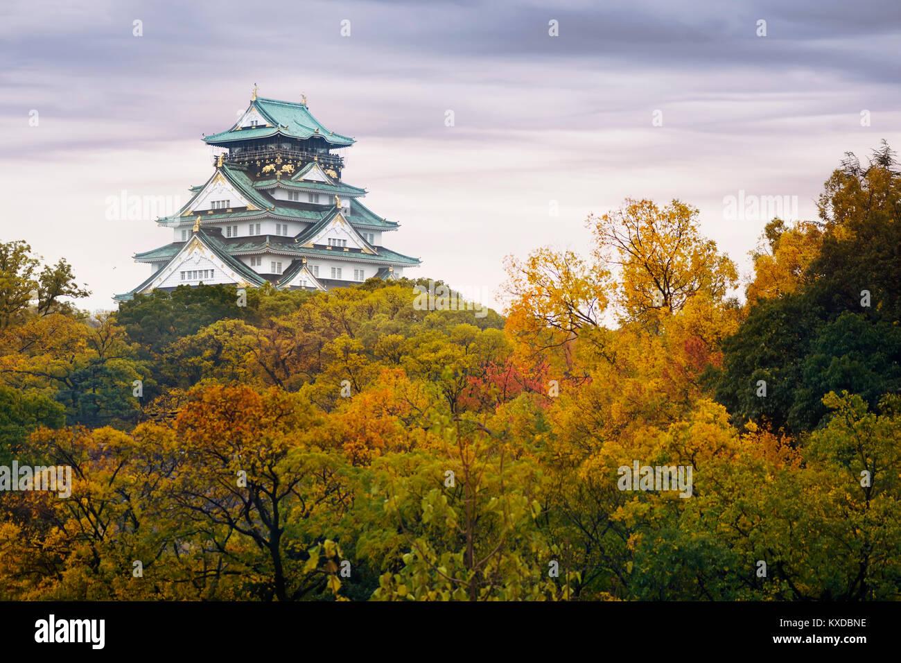 Il Castello di Osaka, Osakajo su una collina circondata da colorati in giallo e rosso di alberi in una nebbiosa Immagini Stock