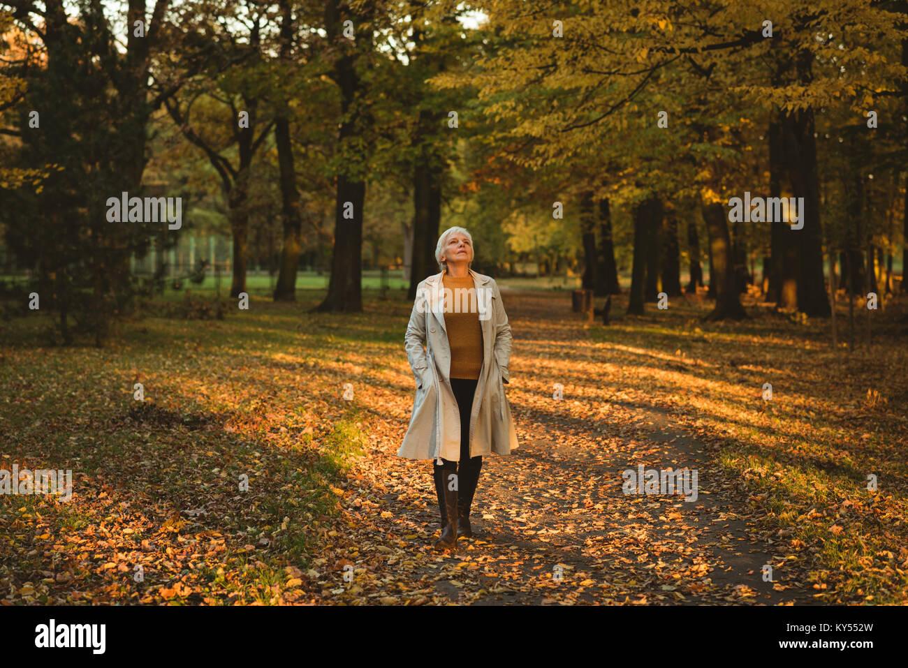Premurosa donna senior in camicia cercando nella foresta di autunno Immagini Stock