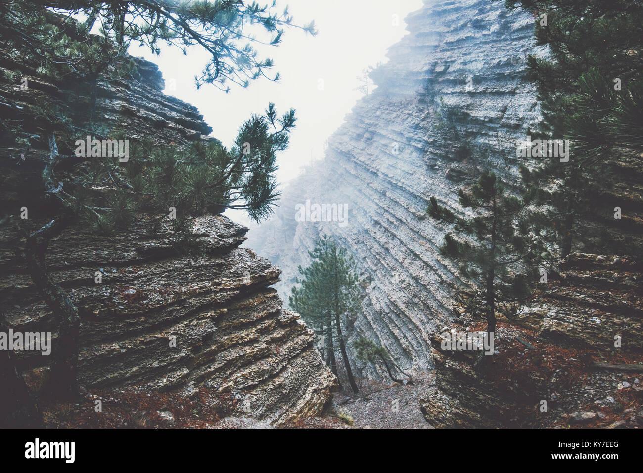 Rocce di foggy paesaggio forestale vista panoramica di viaggio paesaggio sereno giorno di pioggia Immagini Stock