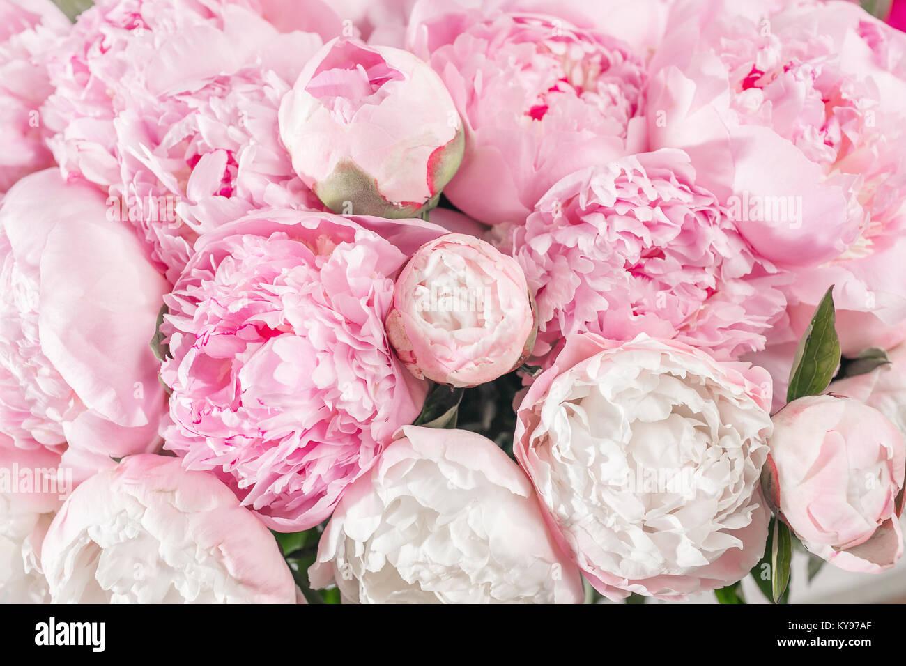 Fiori Tipo Rose.Bouquet Elegante Di Un Sacco Di Peonie Di Colore Rosa Vicino Bel