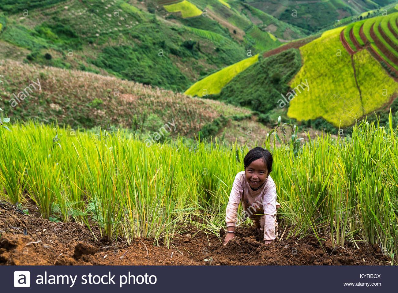 SAPA, Vietnam - Settembre 08: Unnamed ragazzo di H'mongs in Sa Pa, Vietnam Settembre 08, 2017 Sapa è una città di Foto Stock