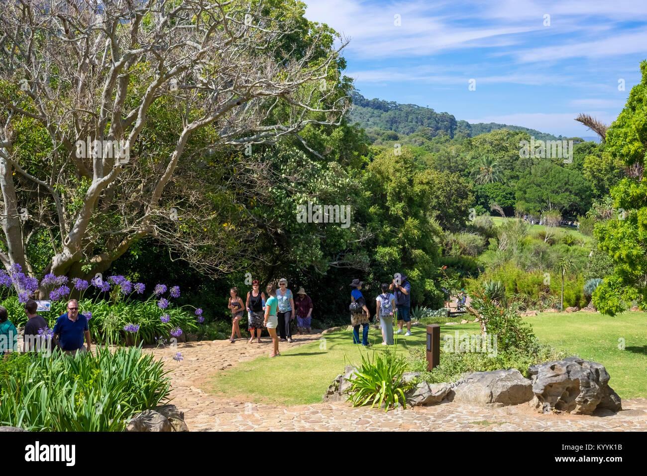 Kirstenbosch National Botanical Gardens, Newlands, Città del Capo, Sud Africa Immagini Stock