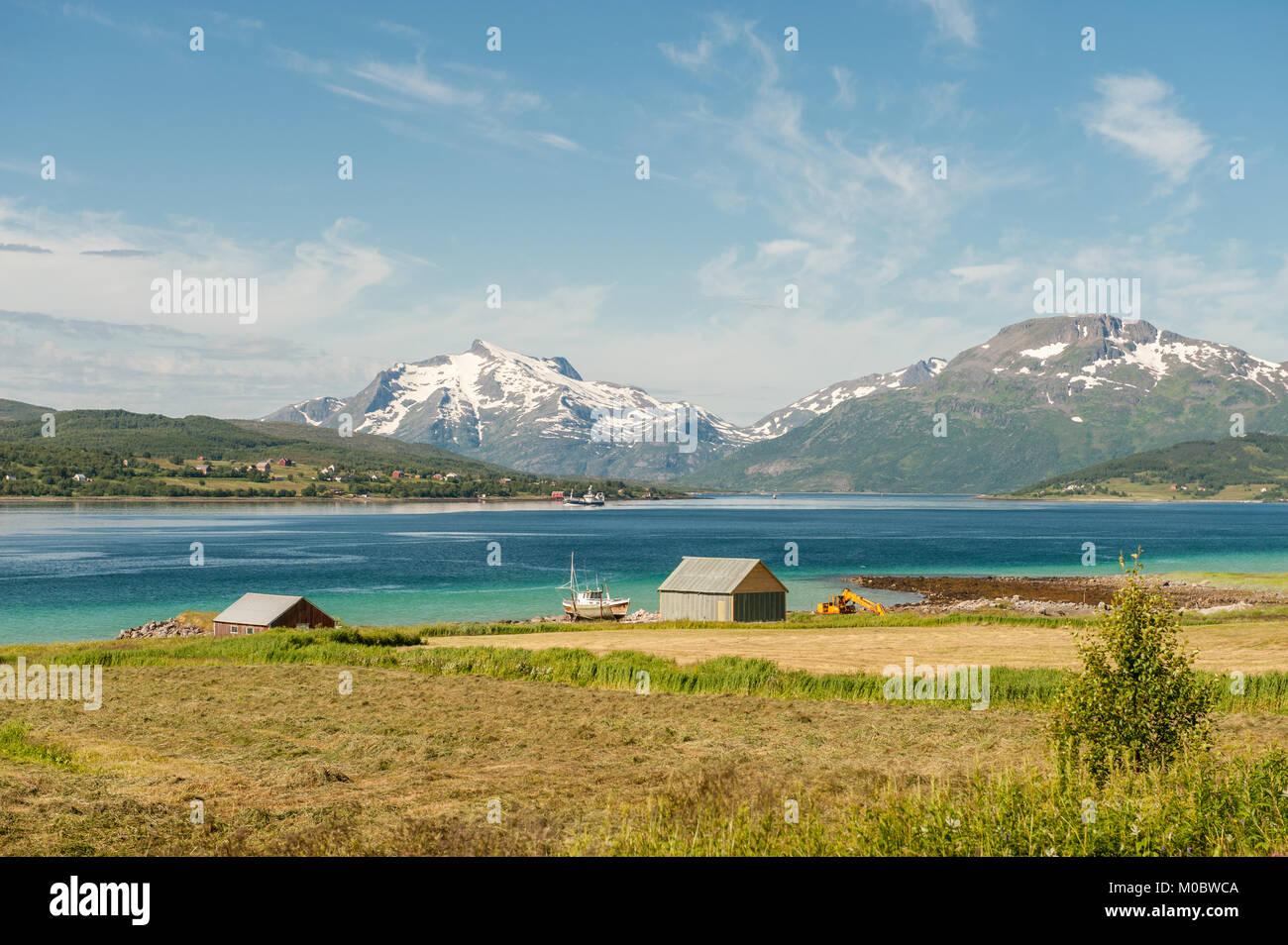 La pesca e l'agricoltura a isole Lofoten durante l'estate nel nord della Norvegia Foto Stock
