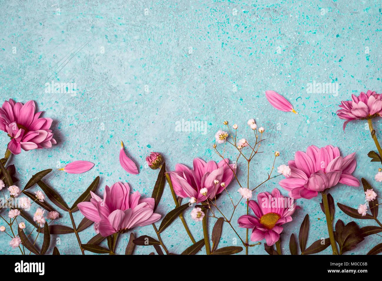 Primavera Estate Natura Creativa Dello Sfondo Fiori Di Colore Rosa
