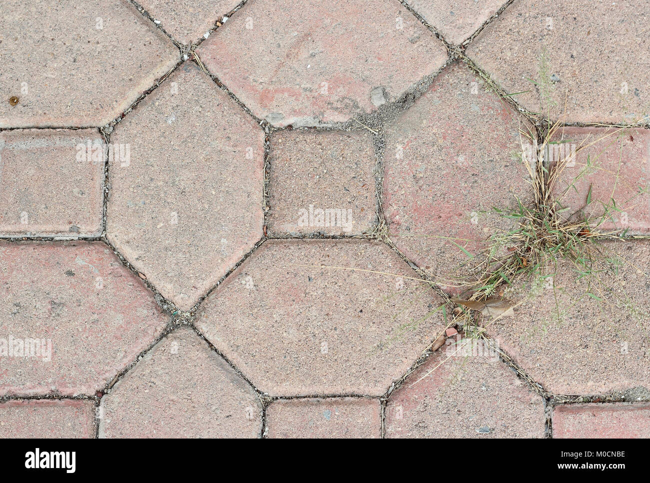 Texture pavimenti esterni pattern pavimento pietra pavimento in