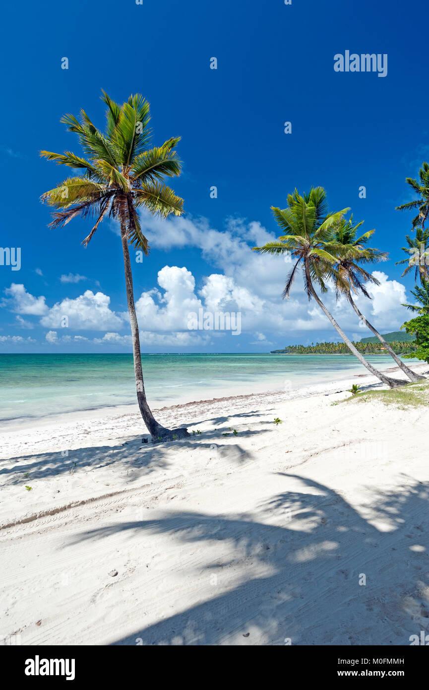 Caribbeab spiaggia nella Repubblica Dominicana Immagini Stock