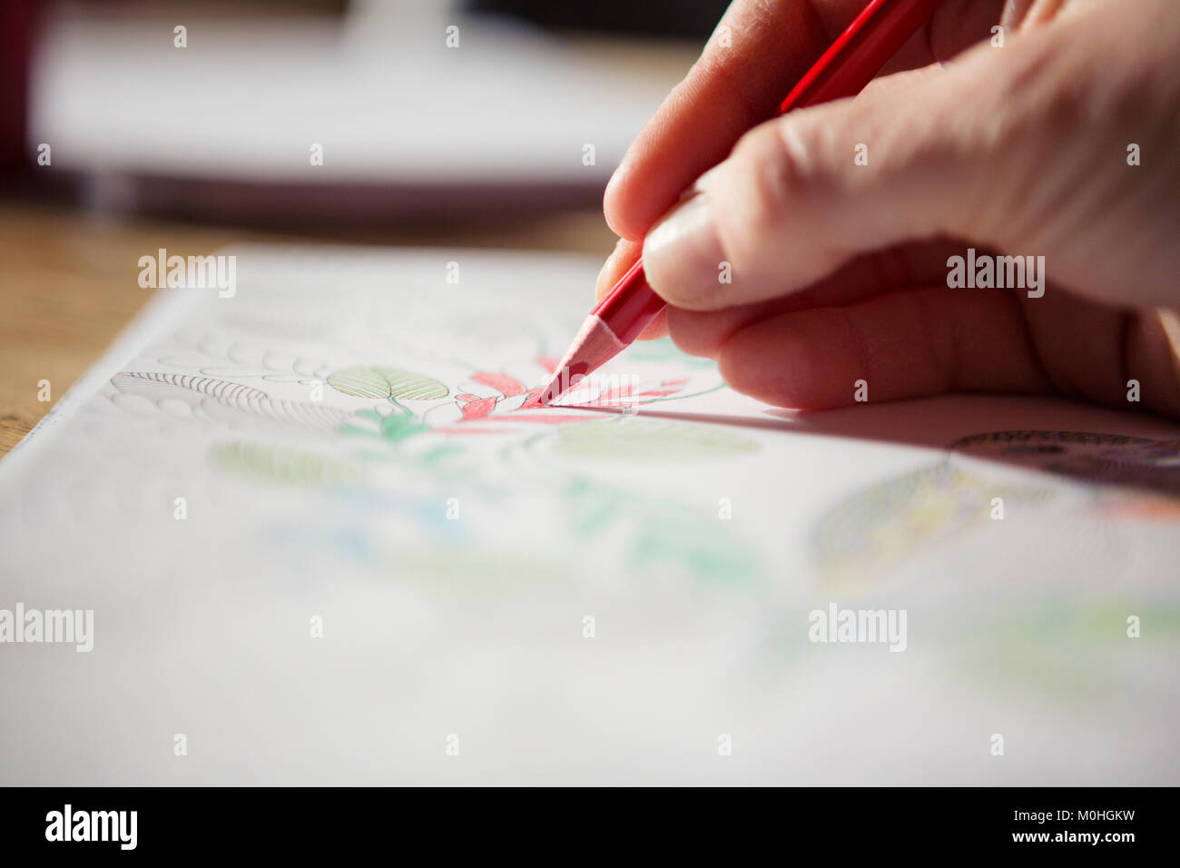 Adulto utilizzando una matita in un adulto libro da colorare Immagini Stock