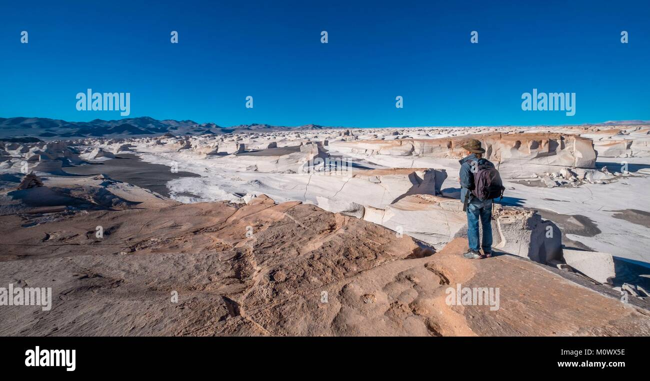 L'Argentina,Catamarca provincia,Puna desert,el Penon,Campo de Piedra Pomez Immagini Stock