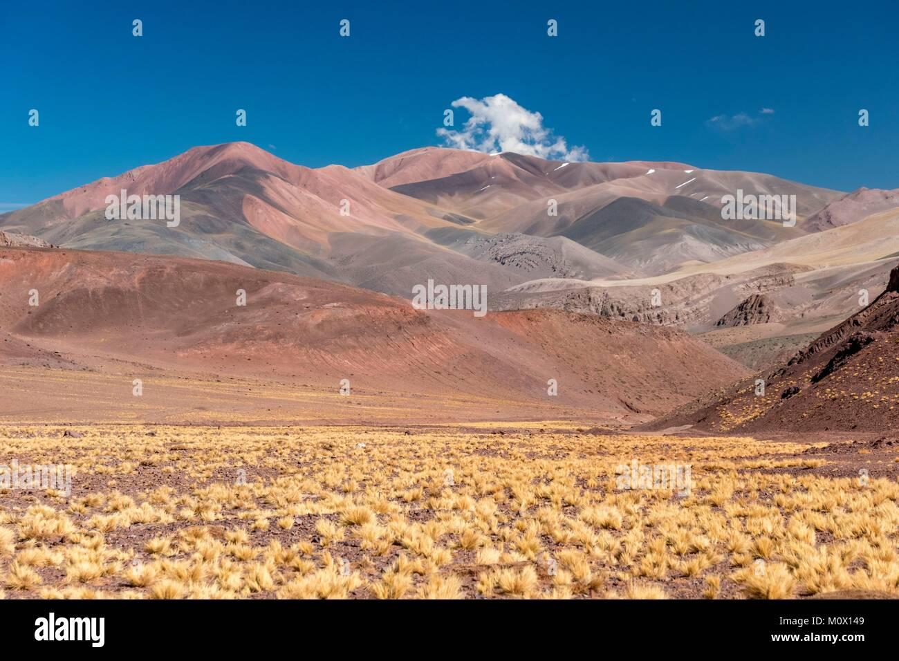 L'Argentina,La Rioja provincia,Laguna Brava Riserva Provinciale Immagini Stock