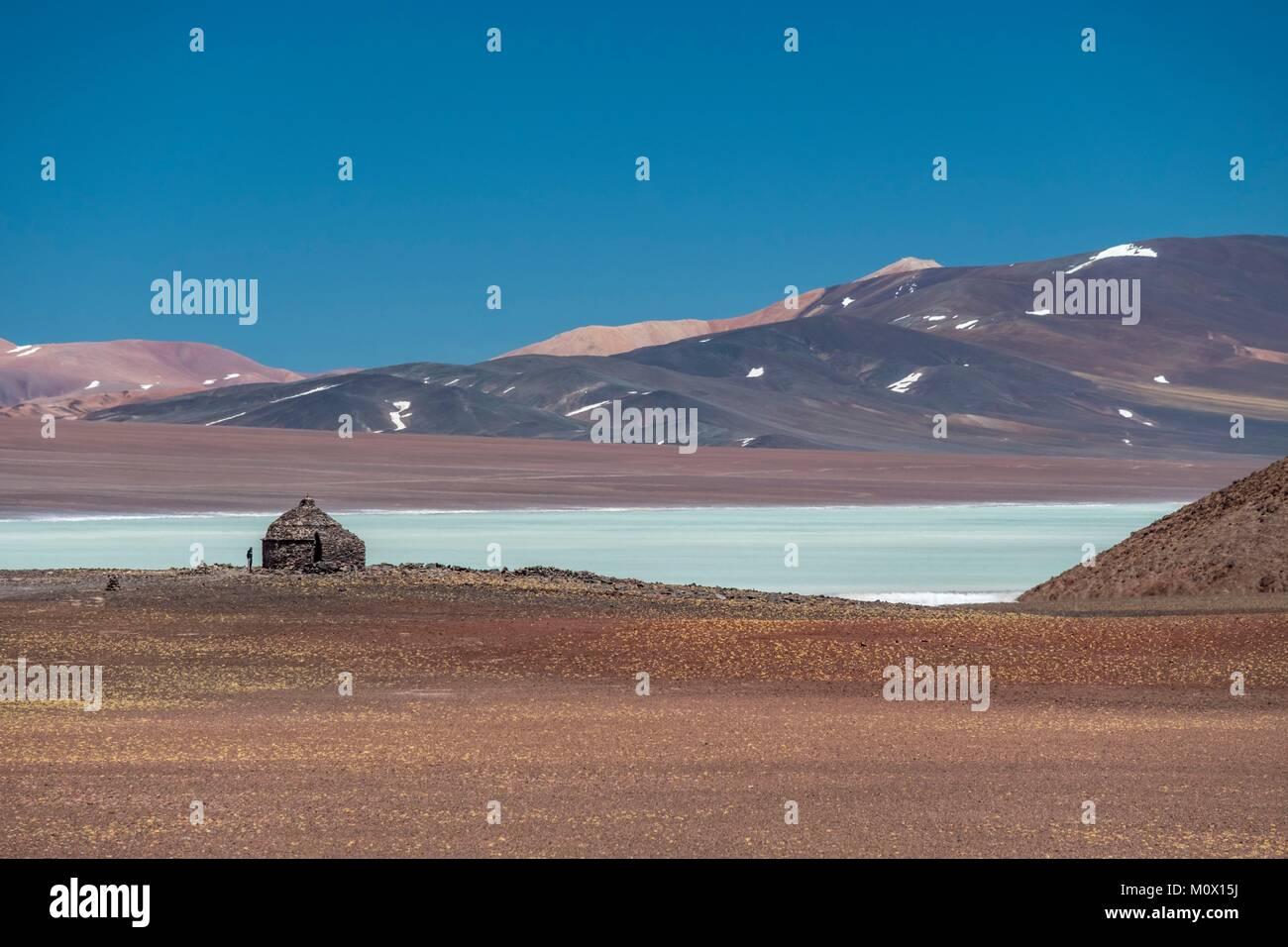 L'Argentina,La Rioja provincia,Laguna Brava Riserva Provinciale Foto Stock