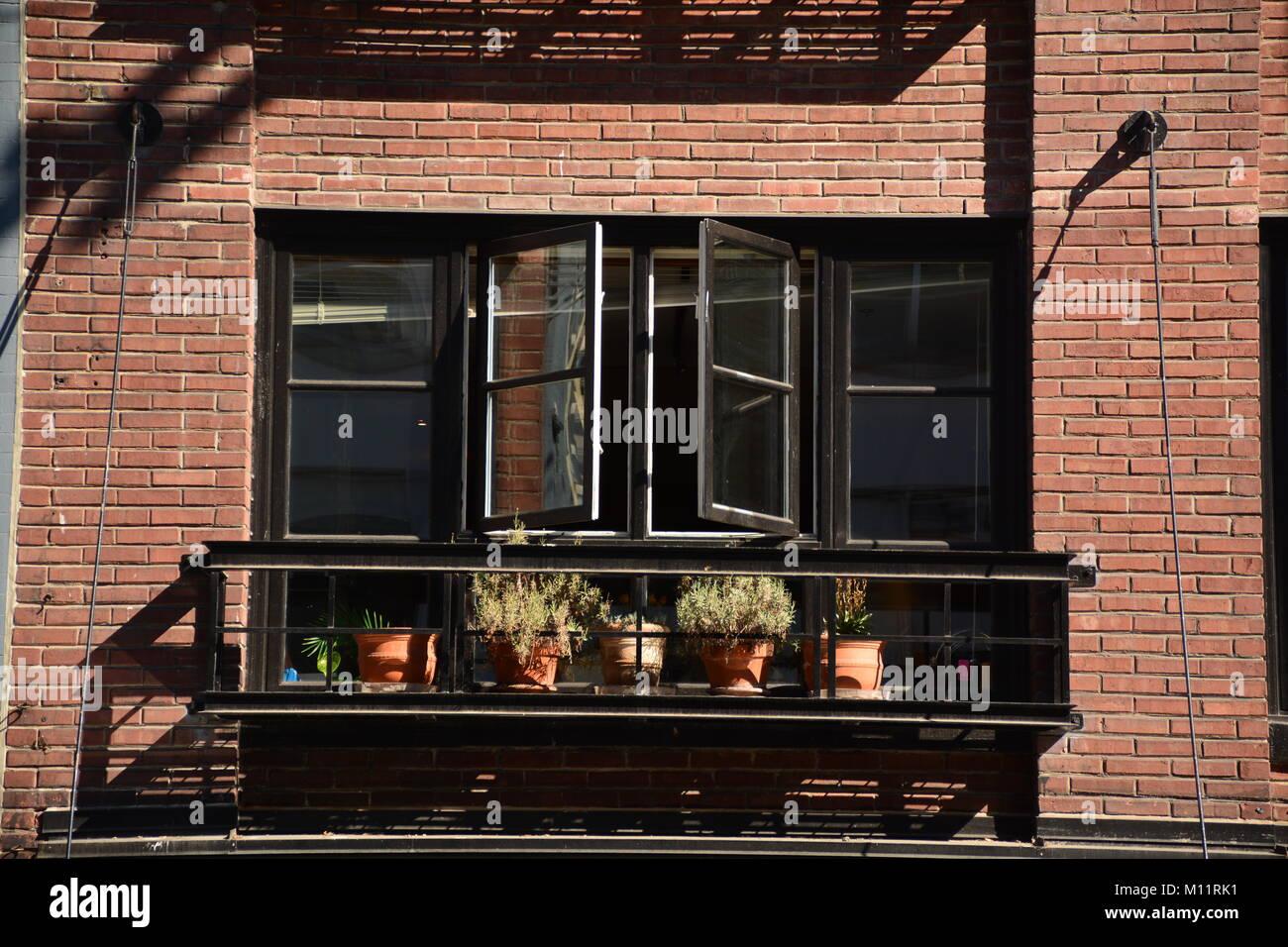Piccolo Giardino Sul Balcone : Finestra di piccolo giardino sul balcone di una casa di mattoni san
