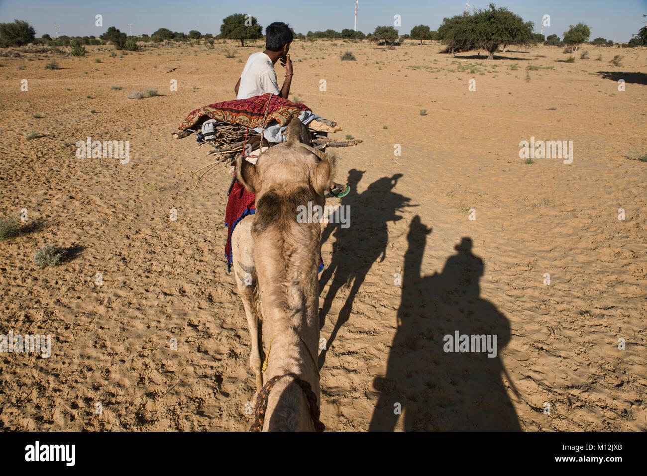 Passeggiate a dorso di cammello nel deserto del Thar, Rajasthan, India Immagini Stock