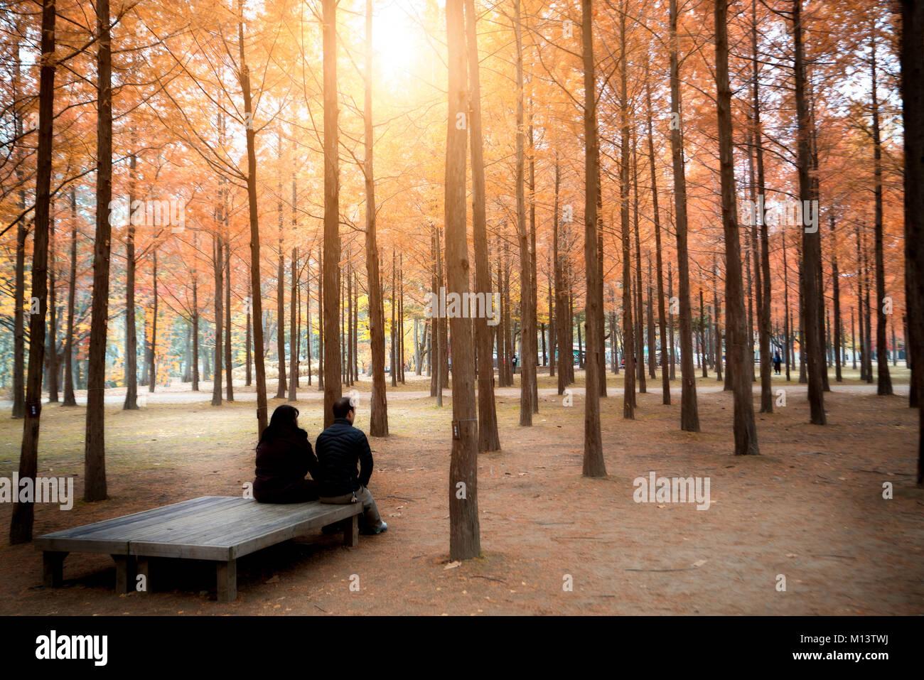 I turisti che vogliono visitare la bella in autunno intorno Nami Island a Seul, in Corea del Sud. Foto Stock