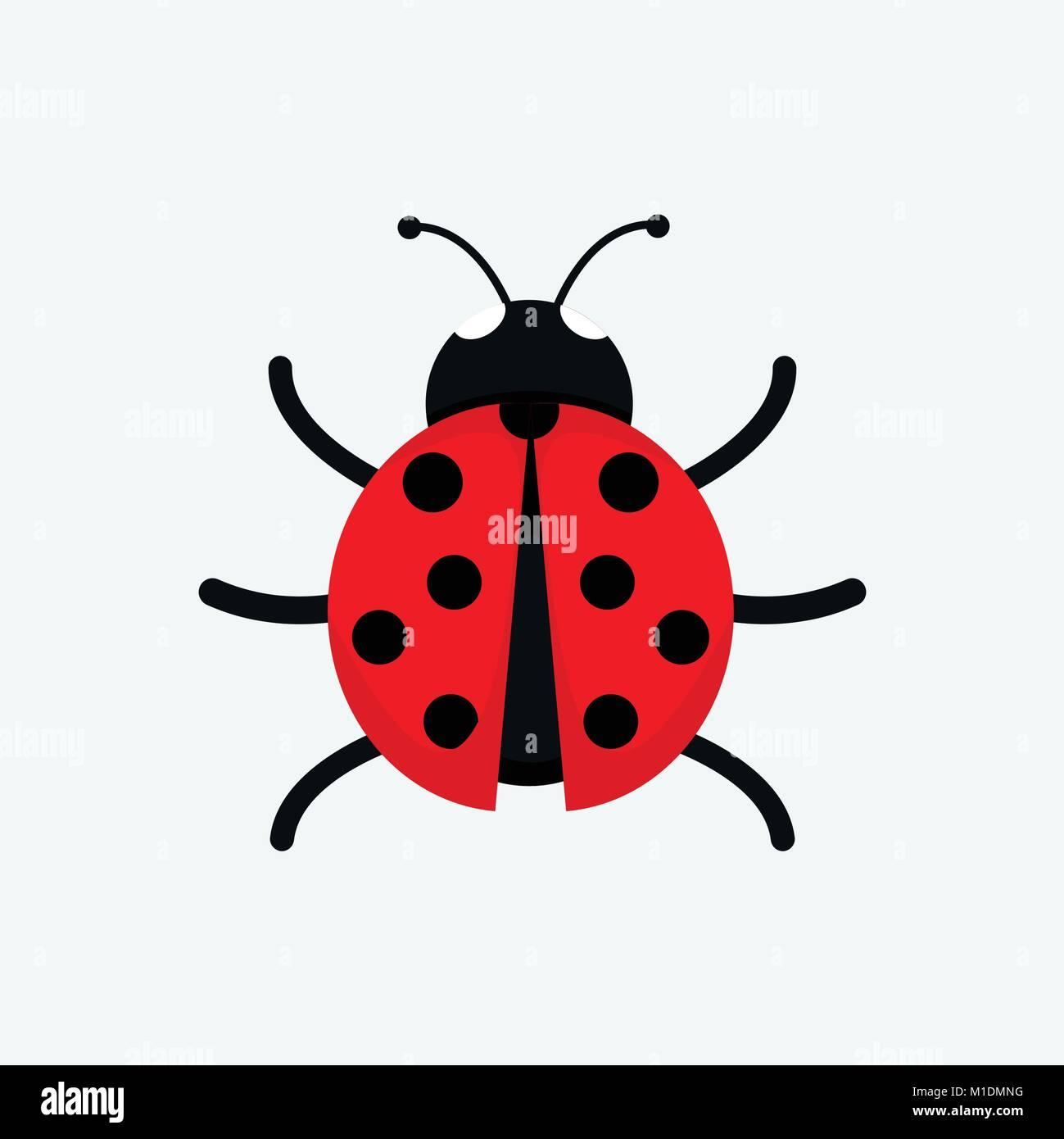 Carino Coccinella Disegno Vettoriale Illustrazione Graphic Design