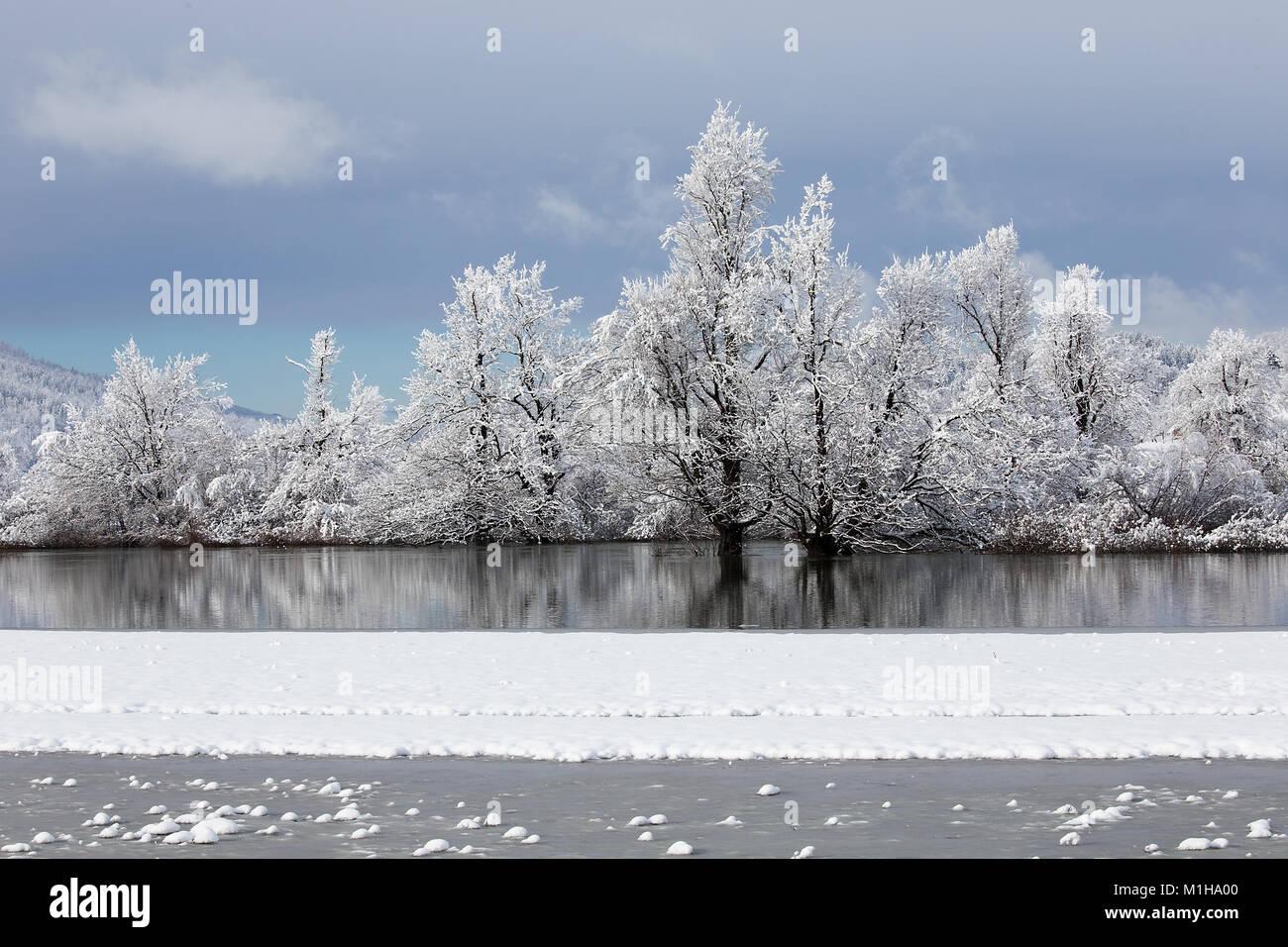 Sfondi Paesaggi Natalizi.Paesaggio Invernale Sfondo Per Carte Di Natale Desktop Con Acqua Di Riflessione Alberi Ghiaccio E Neve Planina Slovenia Foto Stock Alamy