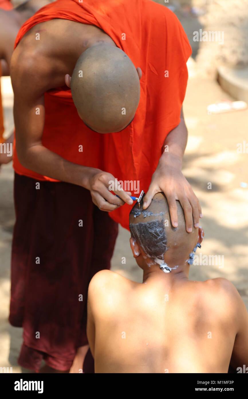 2 monaci buddisti della rasatura della testa Immagini Stock