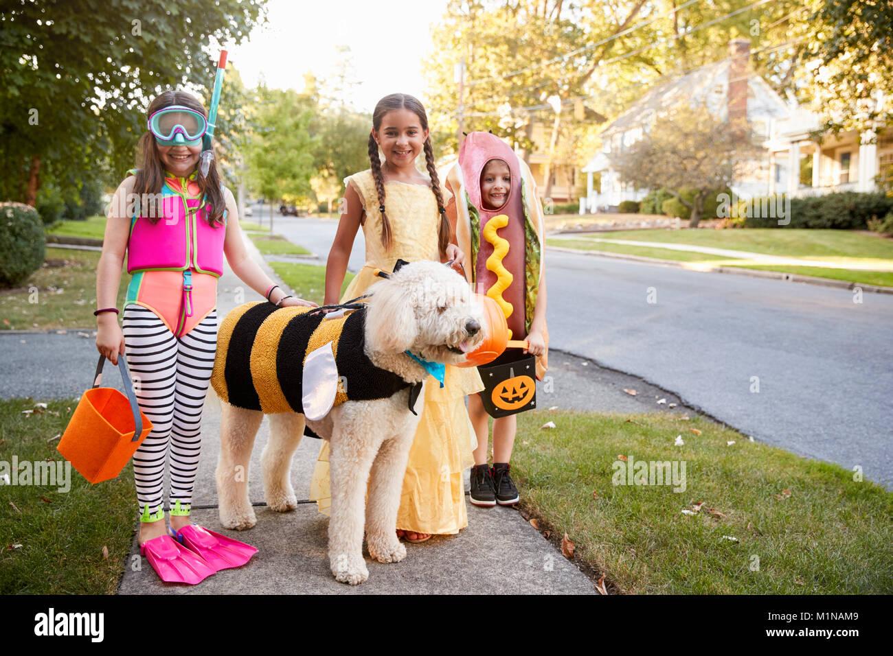 I bambini e il cane in costumi di Halloween per il trucco o il trattamento Immagini Stock