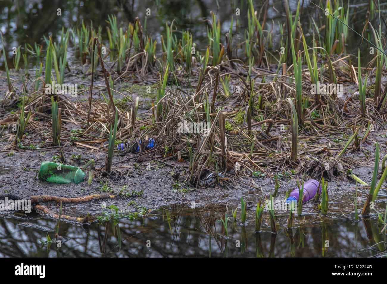 La bottiglia di plastica lavati fino sulla zona paludosa - metafora per l'inquinamento ambientale, l'inquinamento Immagini Stock