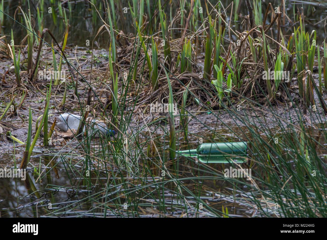 Bottiglie in vetro e in plastica lavati fino nella zona paludosa - metafora per plastica inquinamento ambientale Immagini Stock