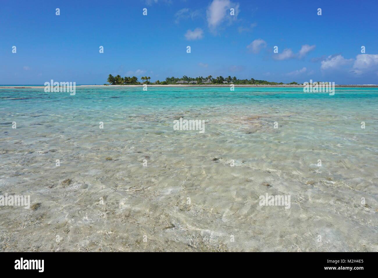Acqua poco profonda di una laguna e di un'isola tropicale in background, Tikehau Atoll, Tuamotus, Polinesia francese, Foto Stock