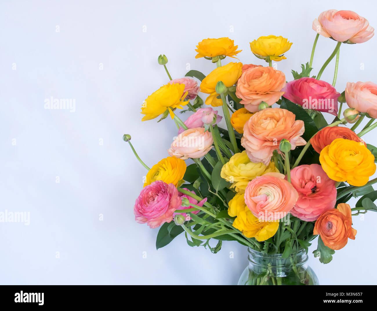 Bouquet Di Ranuncoli Fiori Rosa In Giallo Arancio Colori Pesca Su