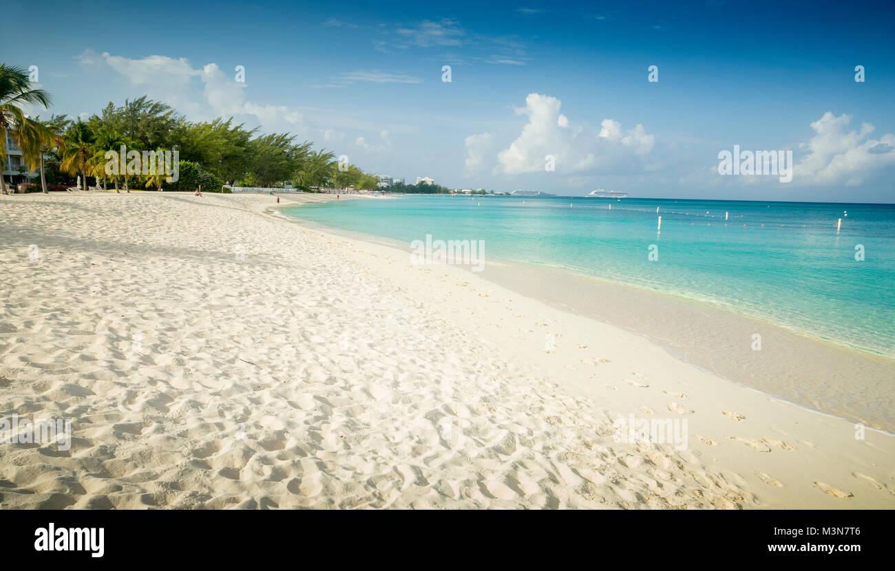 Sette Miglia Bean sull'isola Grand Cayman Immagini Stock