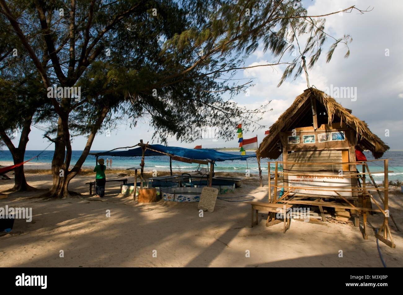 Santuario delle tartarughe di Bolong. Tramonto a Gili Meno isola. Lombok, Indonesia. In questo luogo si raccolgono Immagini Stock
