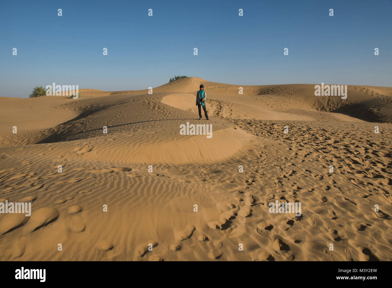 Le dune di sabbia del deserto di Thar, Rajasthan, India Immagini Stock