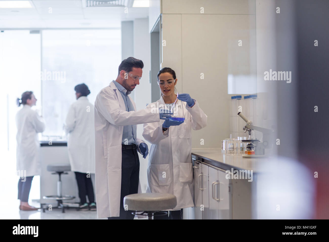Studentessa scienziato che lavora su un esperimento Immagini Stock