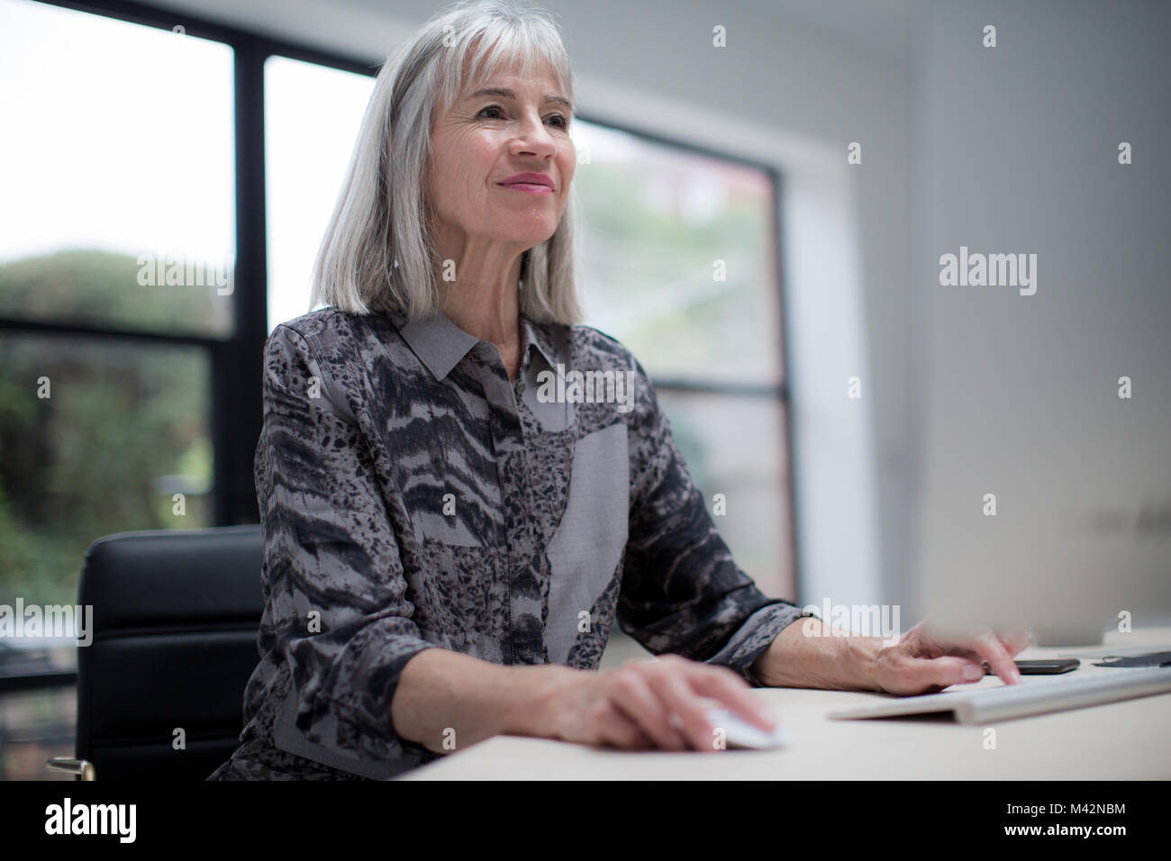 Senior imprenditrice utilizzando il computer Immagini Stock